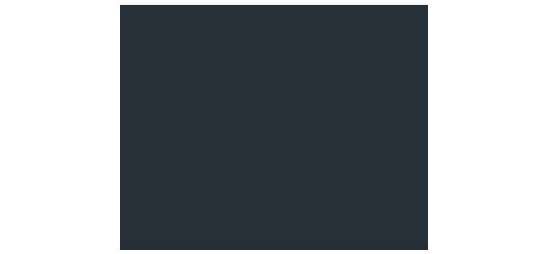 Zizo-Logo2-Chebat-Portfolio-Management